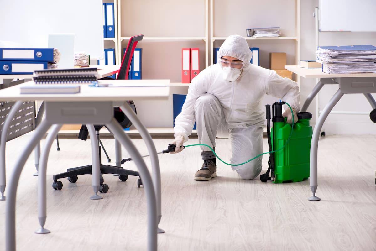 Desinfección por pulverización directa o baldeo